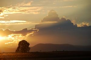 Norul fabulos de Liviu Craciun